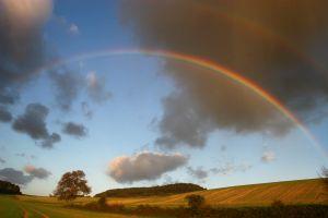 653801_rainbow